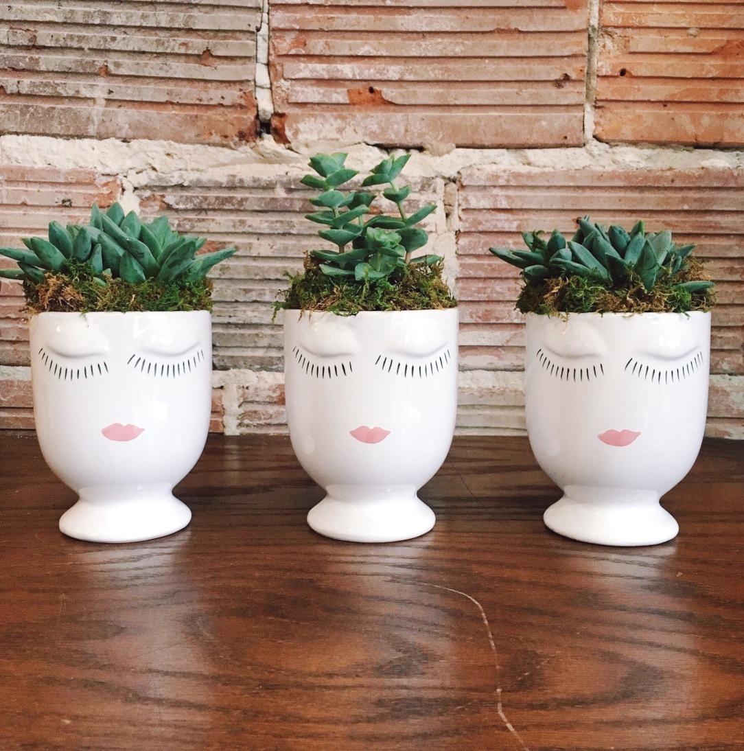 Accent Decor Celfie Vase With Succulents | keiralennox.com